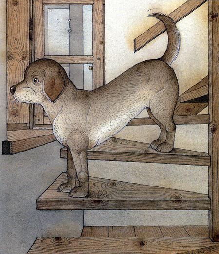пес на лестнице