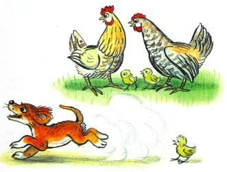 щенок курицы цыплята