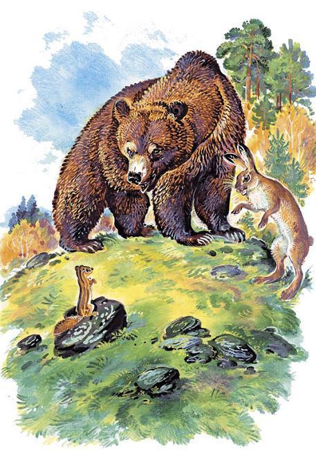 медведь и заяц на опушке