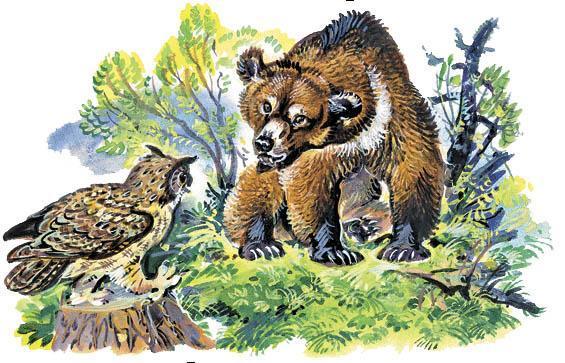 медведь и филин
