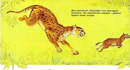 Доисторический саблезубый тигр преследует эогиппуса. Эта первобытная лошадка — далекий предок нашей лошади.
