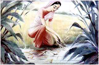 Мотхо присела на берегу ручья и стала вынимать из него листья и ветки