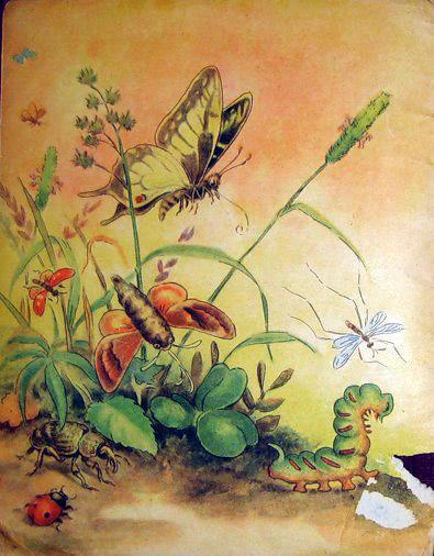Муравей и стрекоза