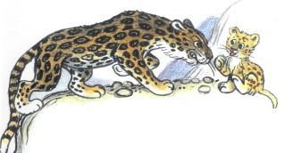 львенок и злой ягуар