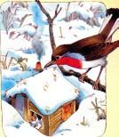 зима птица на ветке