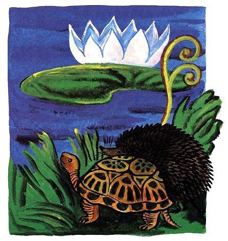черепаха и дикобраз