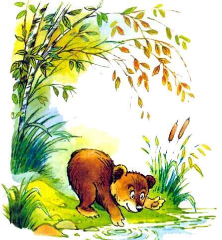 медвежонок на берегу