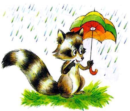 енот с зонтиком