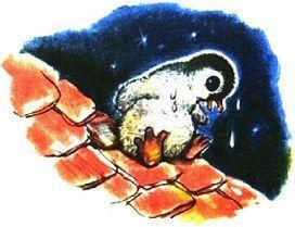 Пингвинёнок на крыше