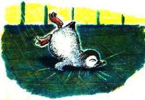 Пингвинёнок упал
