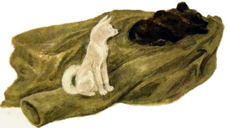 собака и медвежонок