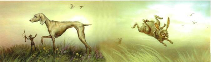 борзая загоняет зайцев