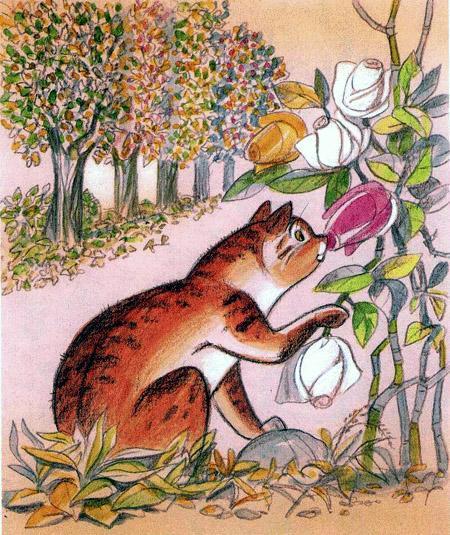 кот нюхает розу
