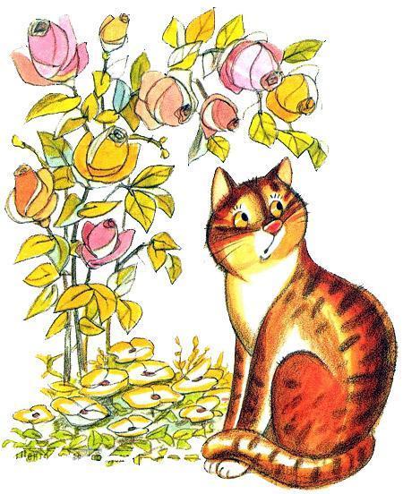 кот под розовым кустом