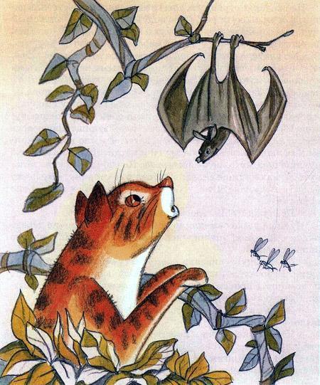 кот и летучая мышь