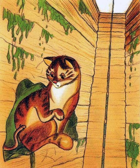 кот на дне колодца
