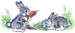 зайцы, морковка