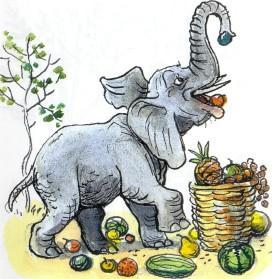 слон, ест
