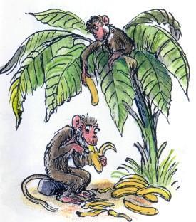 обезьяны, едят, бананы, пальма