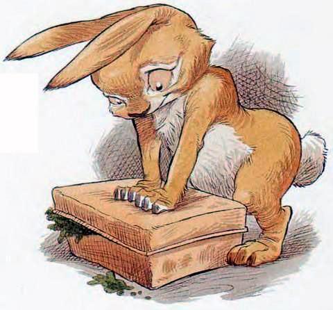 Кролик закрывает коробку