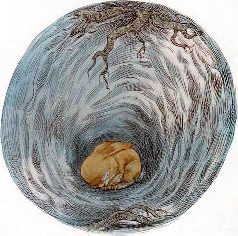 Кролик в норе