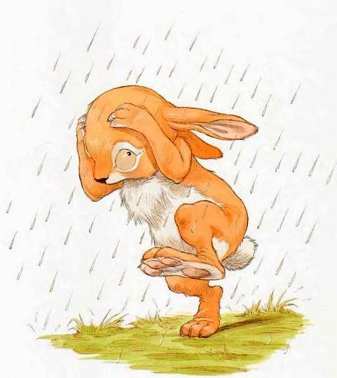 заяц под дождем картинки вас получится