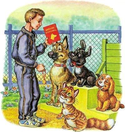 дрессировщик награждает собак