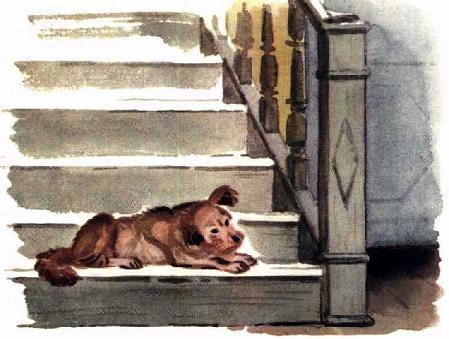собака лежит на ступеньках