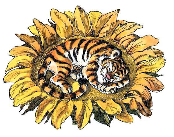 тигрёнок на подсолнухе