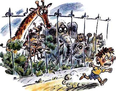 мальчик в зоопарке