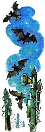 ночь летучие мыши