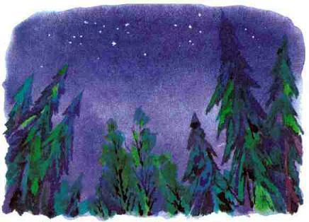 ночное небо в лесу