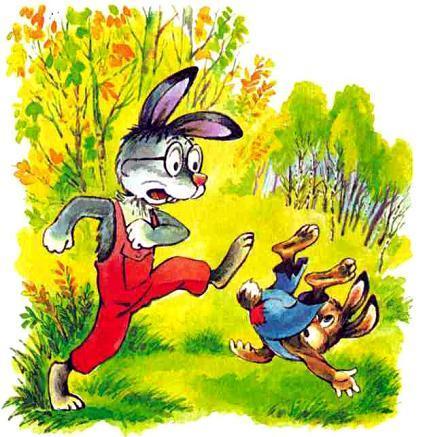 зайцы, заяц