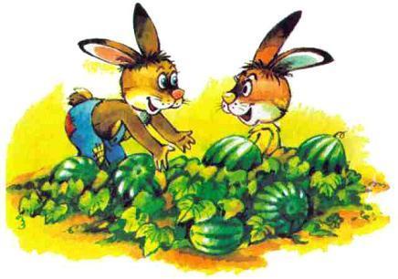 зайцы и арбузы