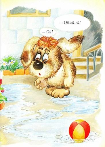 Умная собачка Соня   Изображение - 2