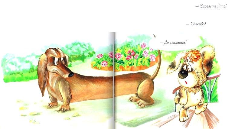 Умная собачка Соня   Изображение - 3