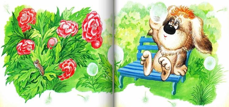 Умная собачка Соня   Изображение - 7