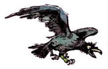ворона кагги карр