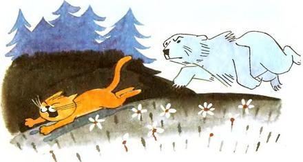 медведь гонится за котом
