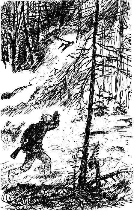 Сказка Заячьи лапы, Паустовский Константин