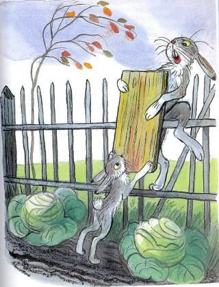 зайцы в огороде делят доску капуста