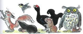звери животные