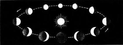 Фазы Меркурия или Венеры, какими их видит наблюдатель с Земли.