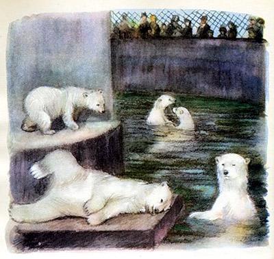 белые мишки! —закричал Ёжик.— Смотри: они купаются!